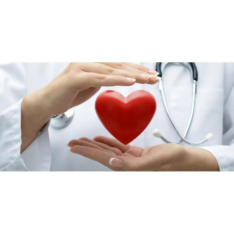 Сердце. Причины и профилактика заболеваний