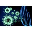 Икра морского ежа – помощь при восстановлении иммунитета