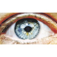 Зрение и память