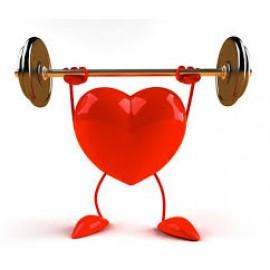 Хитозан с трепангом - препарат для сердечно-сосудистой системы