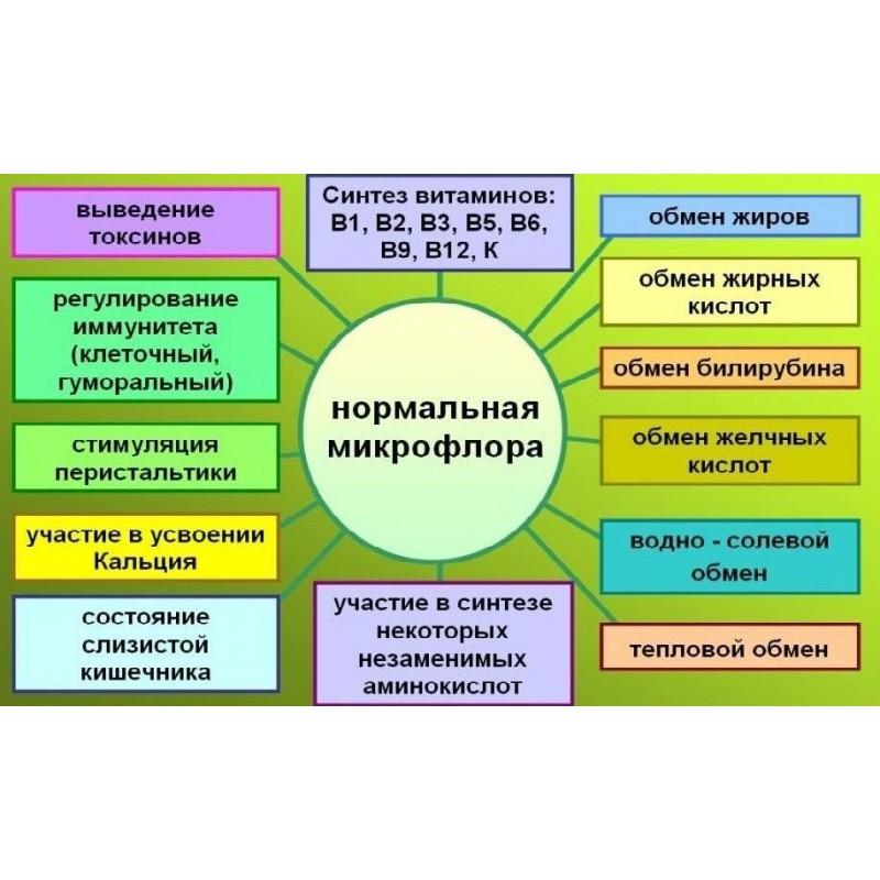 Сорбент для восстановления микрофлоры кишечника